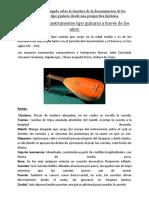 1.1.1. Instrumentos de Tipo Guitarra