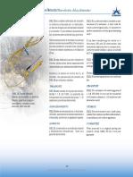 Pag_17.pdf
