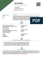 sample-smart-and-balanced-resume (1).docx