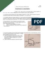 TPN°5 - Campo Magnetico.pdf