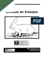 crianza_conejos
