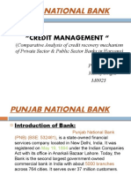 ppt on Punjab National Bank by manoj singla