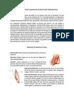 ABORDAJE Y TÉCNICA QUIRÚRGICA DE FRACTURAS TRIMALEOLARES.docx