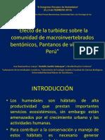 CongresoHumedales II
