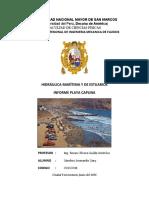 Informe Playa La Caplina Talleres