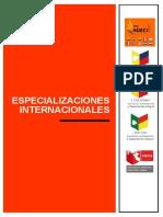 ONG Adeci PDF