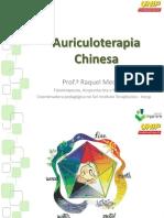 Auriculoterapia I - Unip - 2017