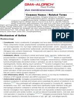 Astragalus Membraneceus