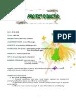 0 Proiect Avap Inspectie Martie
