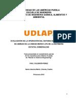 Evaluación Absorcion:Desorción DEA relleno H2S