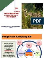 Implementasi Strategi Kampung KB Dan Evaluasi.