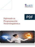 PNL básico