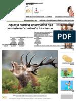 Caquexia Crónica_ Enfermedad Que Convierte en 'Zombies' a Los Ciervos _ Salud180