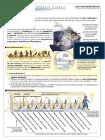 Conscienciologia Ciclo Multiexistencial PDF High Quality