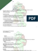 1_proiect_dp.docx