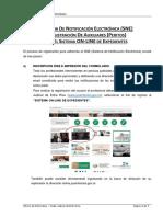 Sne - Manual de Registro Peritos v2