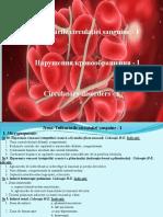 Tulburările Circulației Sanguine I