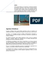 Patologia de La Madera y Proteccion