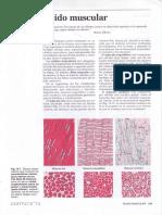 CAPÍTULO -13-Tejido muscular.PDF