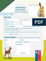 Comprobante_Existencia_microchip.pdf