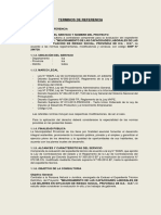 TDR Evaluación GDS Ica