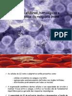 Aula 9 Bases Celulares Histologicas e Anatomicas Da Resposta Imune