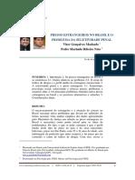 04 Presos Estrangeiros No Brasil e o Problema Da Seletividade Penal