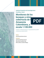 Monitoreo bosques amazonia 2012-2014.pdf
