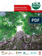 Coca y Deforestacion REDD+ Colombia