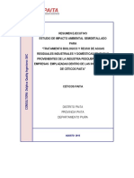 Resumen Ejecutivo Eia Ceticos Paita