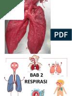 BAB 2 Sistem Respirasi Manusia