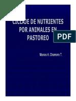 Ciclaje de Nutirentes en Pastoreo Exp