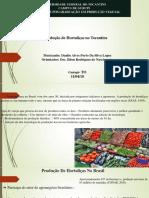 Produção Hortaliças