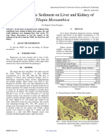 Impact of Toxic Sediment on Liver and Kidney of  Tilapia Mossambica