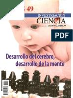 Revista Investigacion Y Ciencia Temas 049 Desarrollo Del Cerebro