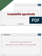 256081777-Synthese-Loi-Comptable-Et-CGNC.pdf
