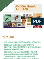 03-Serangga Hama Gudang