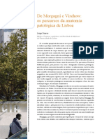 Anatomia Inicio.pdf