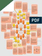 Concept Map Kim insurance