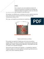 Remonografia Hidrodinamica Arreglada