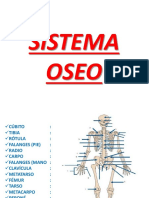 Sistema_seo.pptx;filename= UTF-8''Sistema óseo