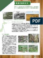 Bosque circular