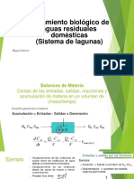Clase 6 Lagunas.pdf