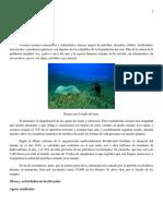 1. Degradacion Del Mar