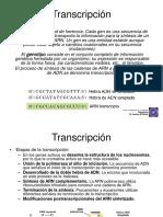 Transcripcion[Clase Presencial]