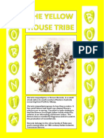 House Tribes Posters - BORONIA