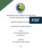 Informe Campo Morrillo