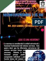 Neurotransmisores y El Snc.expo Farmacoterapia