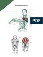 10 Educação Física Na Escola.pdf(1)