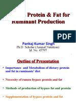 Bypassfatandbypassproteininlivestockfeeding 150310094613 Conversion Gate01